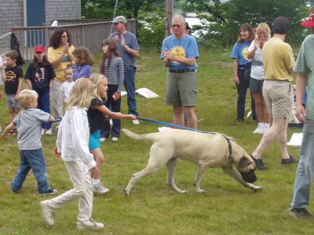 Children are walking a dog in a crowd